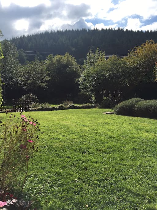Garden and view from back of house