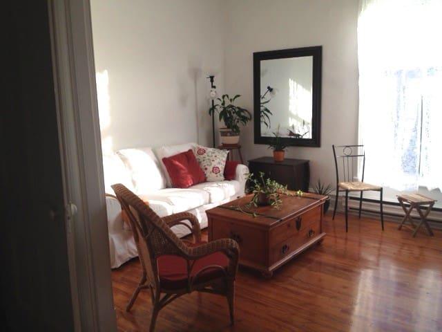 Beautiful apartment per month Plateau M.Royal - Montréal - Apartament