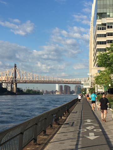 The East River Greenway is an ideal path for a run or bike ride