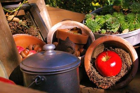 Hübsche Ferienwohnung  mit Garten - Rottenburg am Neckar - Διαμέρισμα