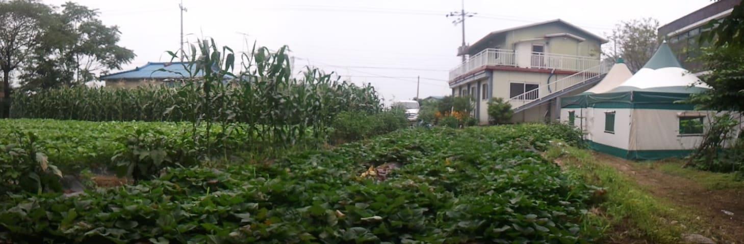 [HOMESTAY in Border area] 철원 농가체험 - Cheorwon-gun - Huis