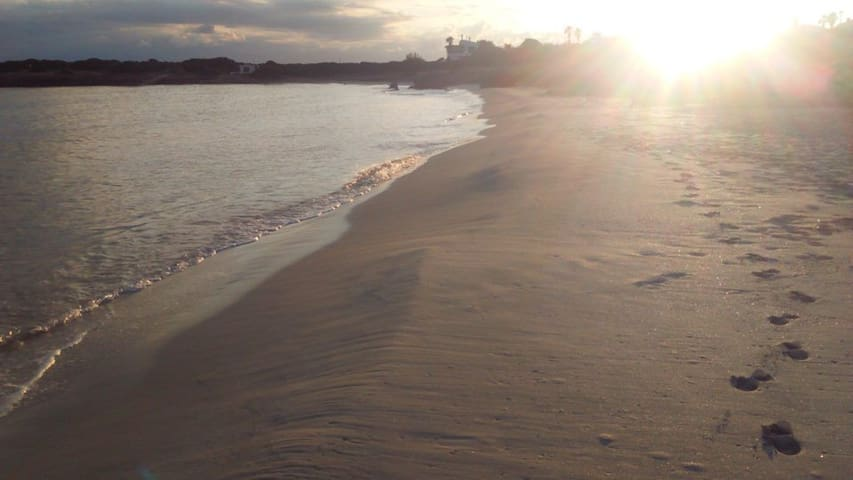 Playa de Xoriguer.
