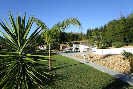 no campo rodeado de vinha - Palmela - Villa