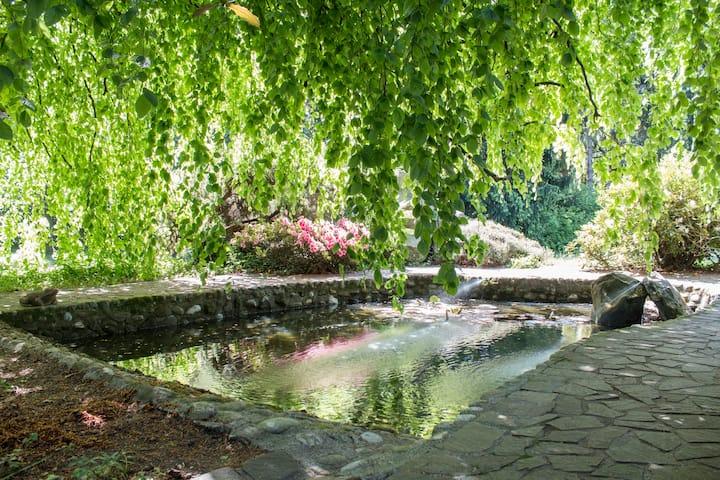 Villa Menta Park: Camera POP