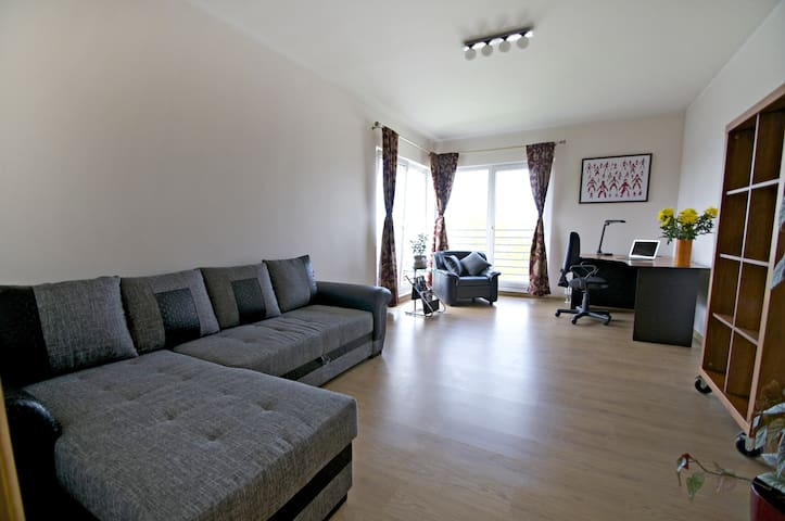 Top floor 2 room apartment in Riga - Riga - Leilighet
