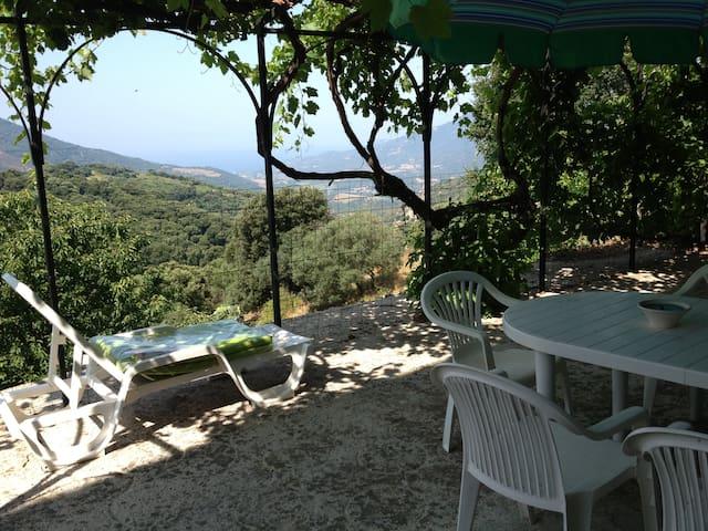 Appartement  typique avec terrasse vue mer - Fozzano - Lägenhet