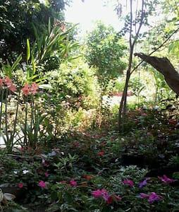 บรรยากาศแบบท้องถิ่น สงบ สบาย - Chiang Mai - Bed & Breakfast
