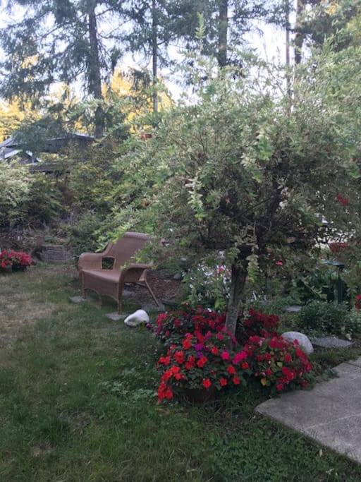 Front Garden at Twilight
