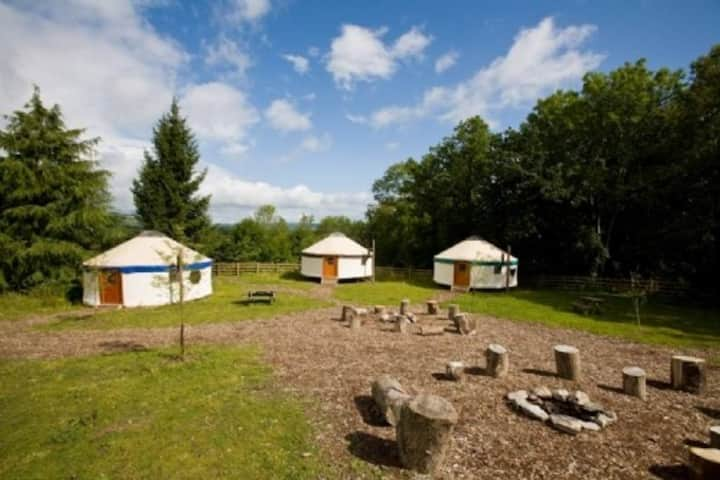 Large Yurt in the Woodland Village
