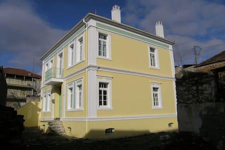 Ιστορικό αρχοντικό στο Άργος Ορεστικό - Argos Orestiko - Şehir evi