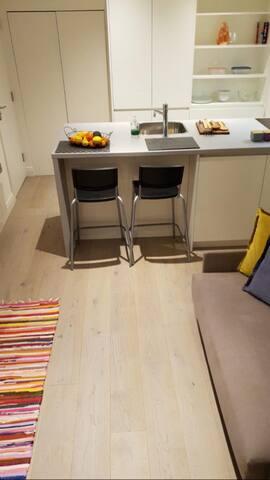 Modern studio with garden by harrods newly refurb