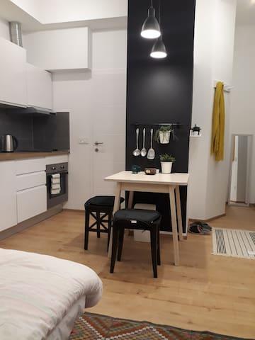 Fan Studio Apartment in the Zagreb center