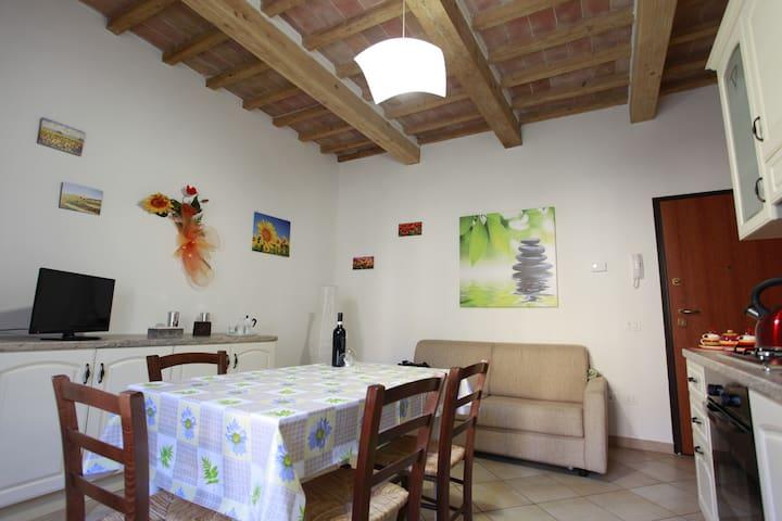 Tuscany bilo loft near Siena - Rosia - Apartment