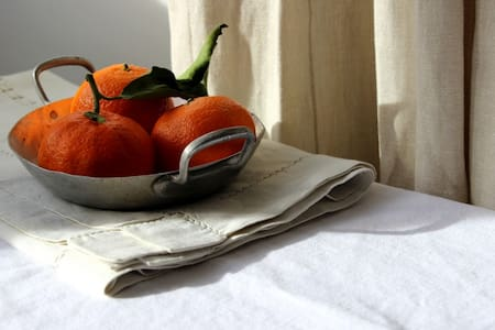 Bed & Breakfast ' Le Petit Chien'