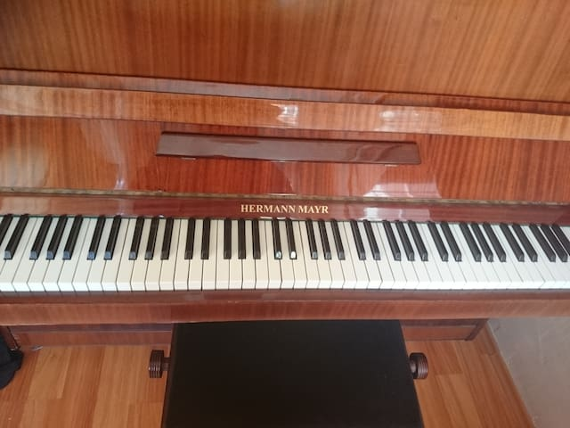 Samsun Musician Home - Samsun - Apartemen