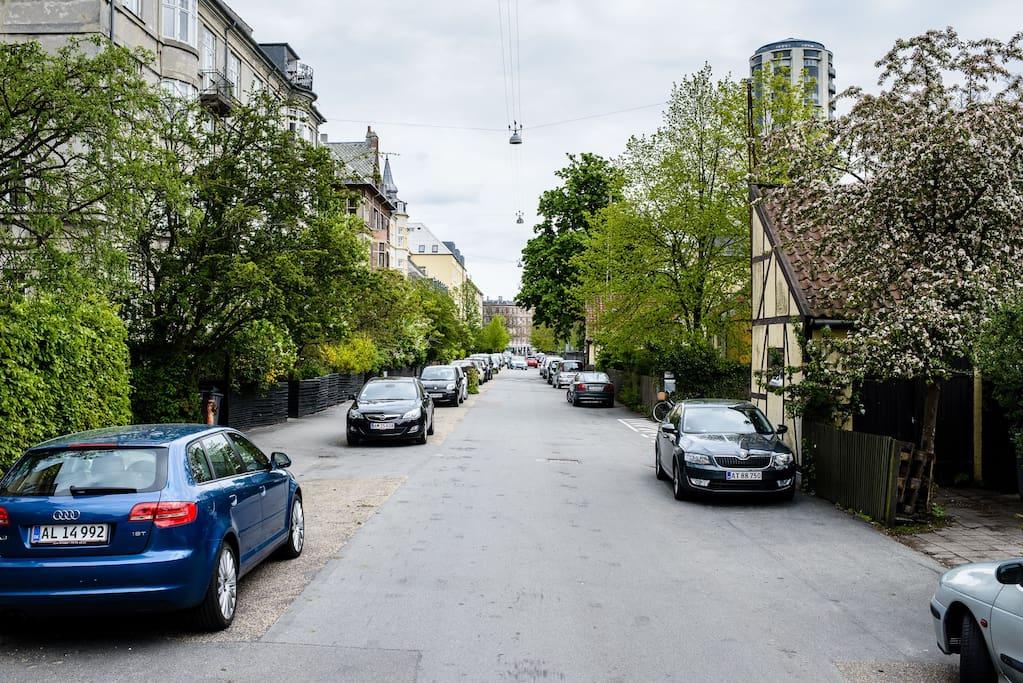Our quiet Street