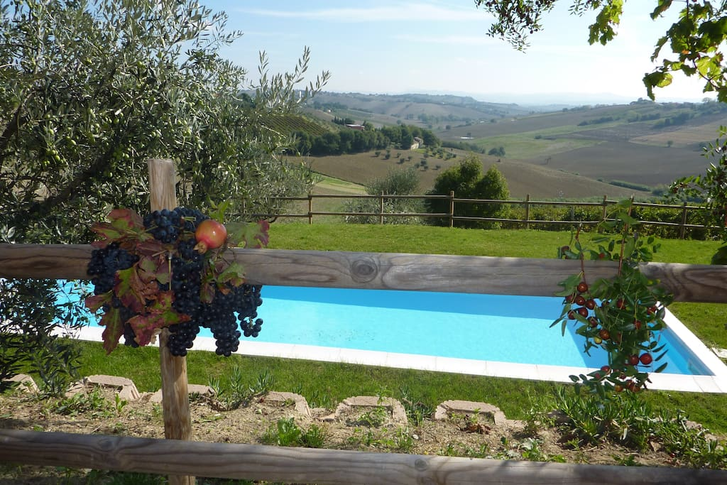 Villa Sant'Elena: the fabulous view from the pool  and from the Villa