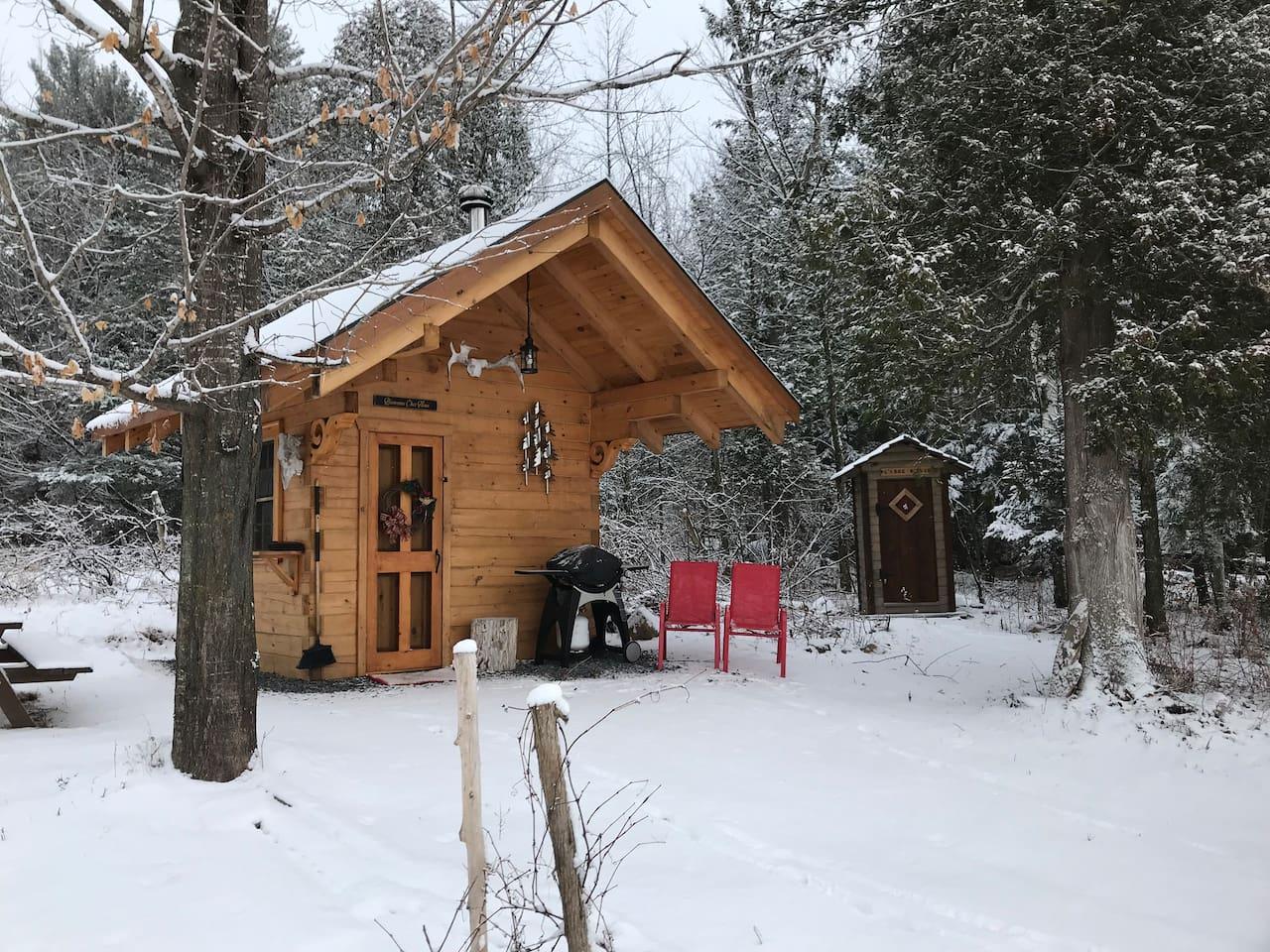 10'x10' log cabin