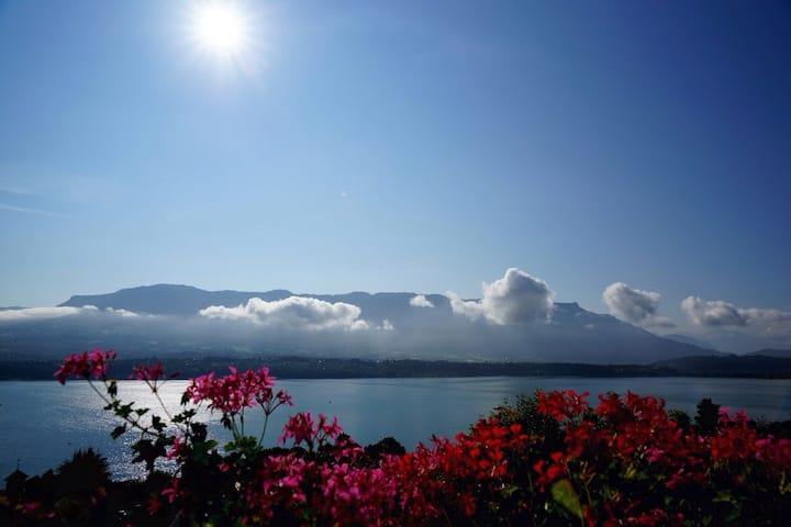 Appartement vue lac et montagnes