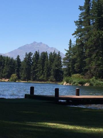 Vista del lago en verano