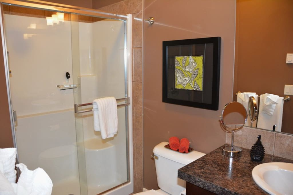 Master ensuite bathroom, walk in shower with rain head and walk-in closet