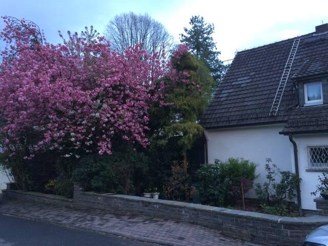 Schladern - 40 min Cologne by train - Windeck (Schladern) - House