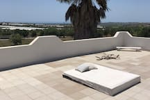 roof terrace (shared area)