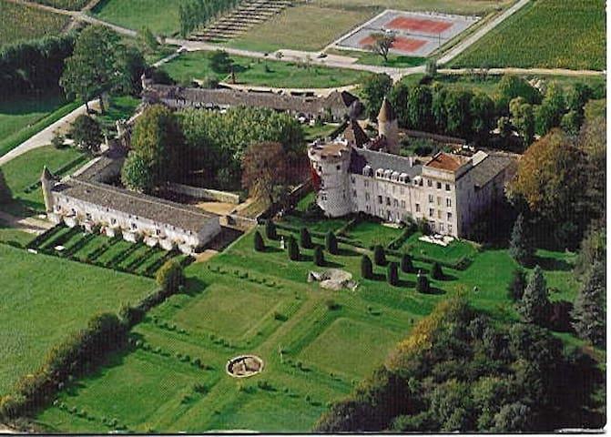 Remise Chateau Chaintre