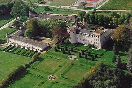 Remise Chateau Chaintre - Chaintré - Haus