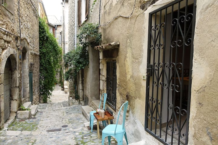 Typical house in historic center - Vence - Apartemen