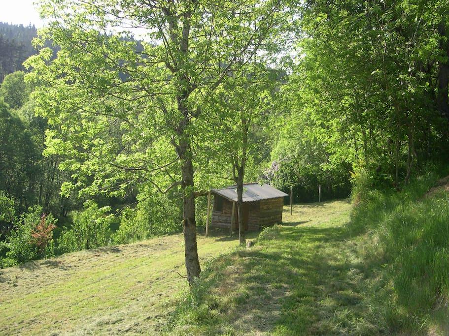 Cabanon avec terrain et necessaire Barbecue Salon de jardin