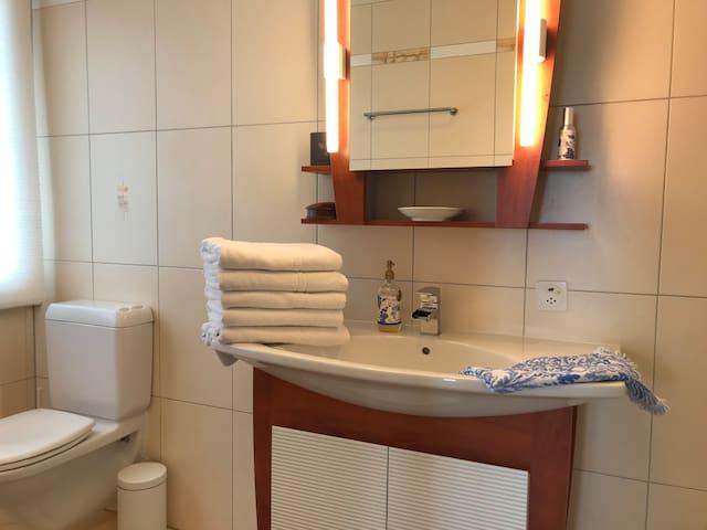 Master en-suite bathroom with steam shower.