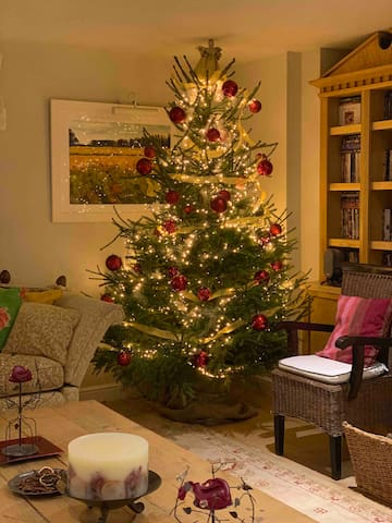 Christmas in the sitting room