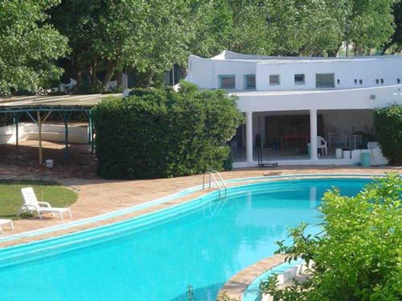 """La piscina del Residence """"Isola Verde"""""""