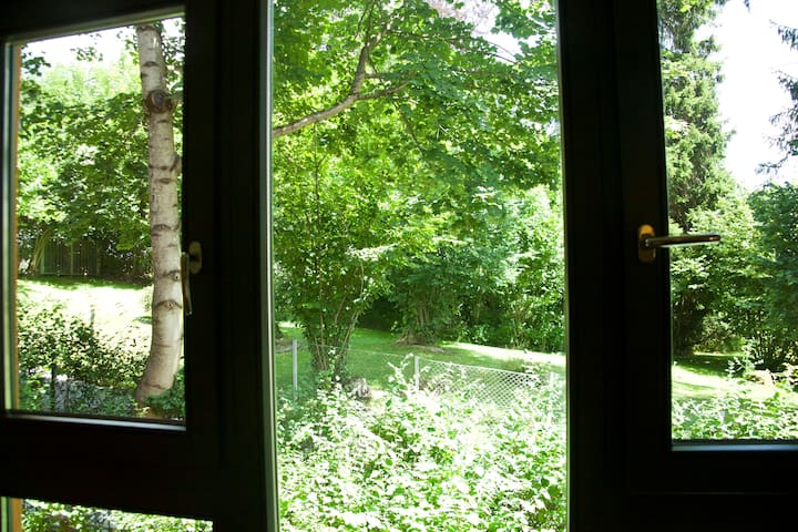 View from bedroom on ground floor