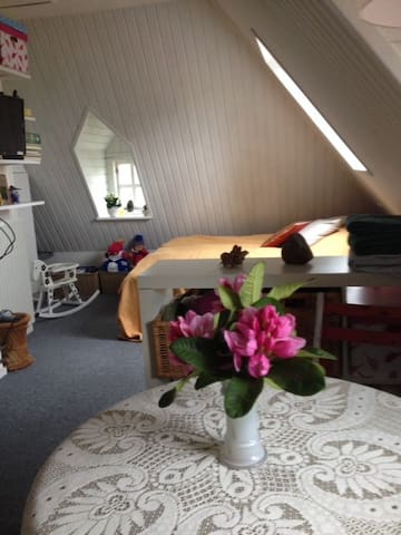 Galleri Sub Rosa B & B - Viborg - Casa