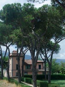 Agriturismo Terre dei Latini - Segni - ที่พักพร้อมอาหารเช้า
