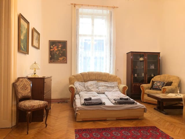 Lovely home with 2 rooms in the heart of Budapest.