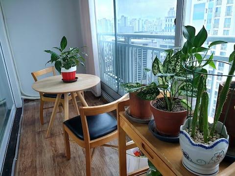 단구 롯데시네마 앞 24평 아파트(방3) 가족여행에 적합한 곳!