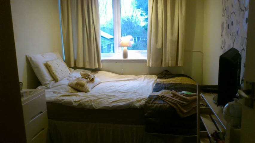 Quiet Professional Homestay (2) - New Haw, Addlestone - House