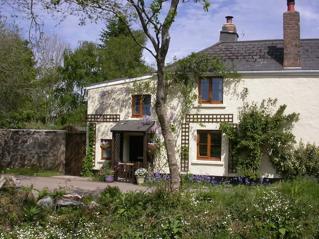 Little Moor,  Dartmoor Cottage - Sticklepath - Casa