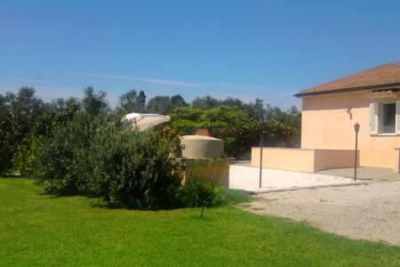 Villa balu' - Campiglia Marittima