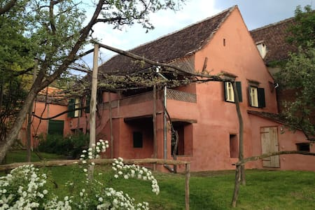 Red House in medieval Transylvania - Copșa Mare