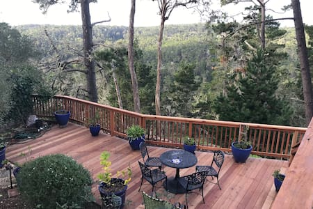 Private romantic 1 br in Carmel Woods, dogs welcom