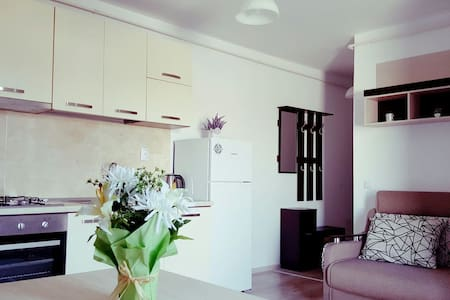 Charming flat in the city center - Iași