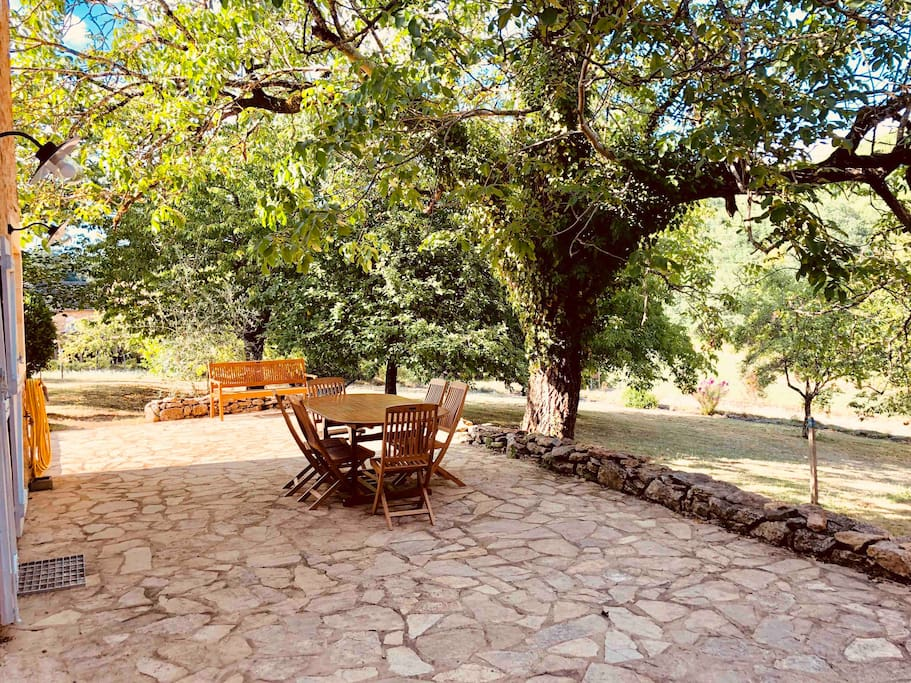 Garden beyond the stone terrace, with apple, cherry, plum and fig trees and hammock.