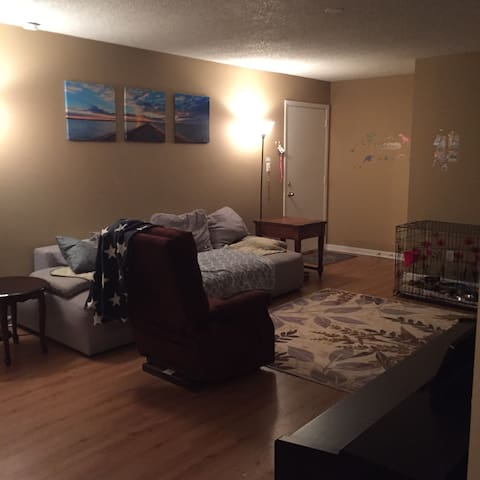 Private Bedroom in Apartment near UB North Campus. - Buffalo