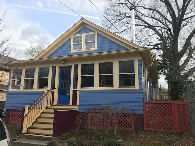 The Blue Bungalow