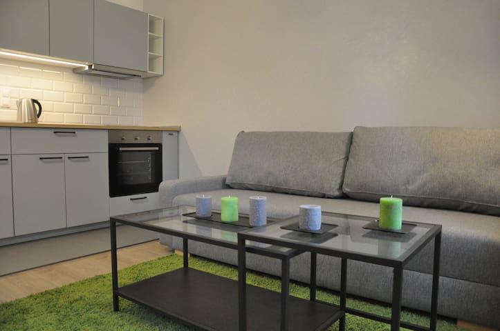 Apartamenty Tespis No.4 (Francuska 100A/9)