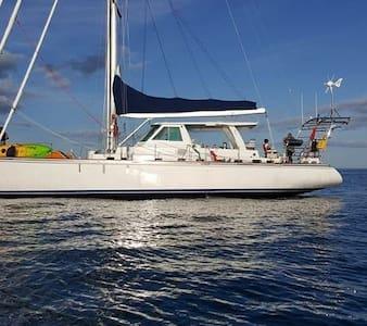60 ft sailing yacht for charter - Kota Tingi
